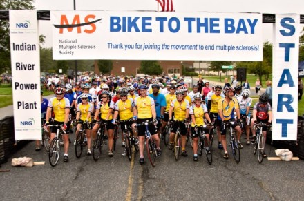 (Generic) Bike to the Bay 2011; Image courtesy of National MS Society